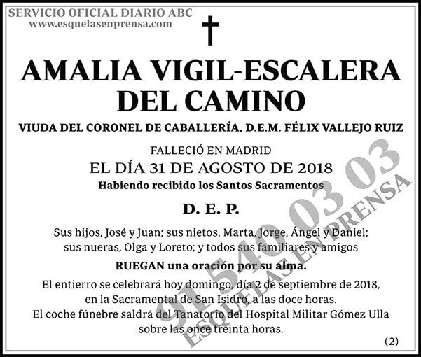 Amalia Vigil-Escalera del Camino